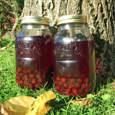 Sloe Gin in a jars
